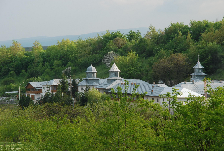 manastirea brazi 1