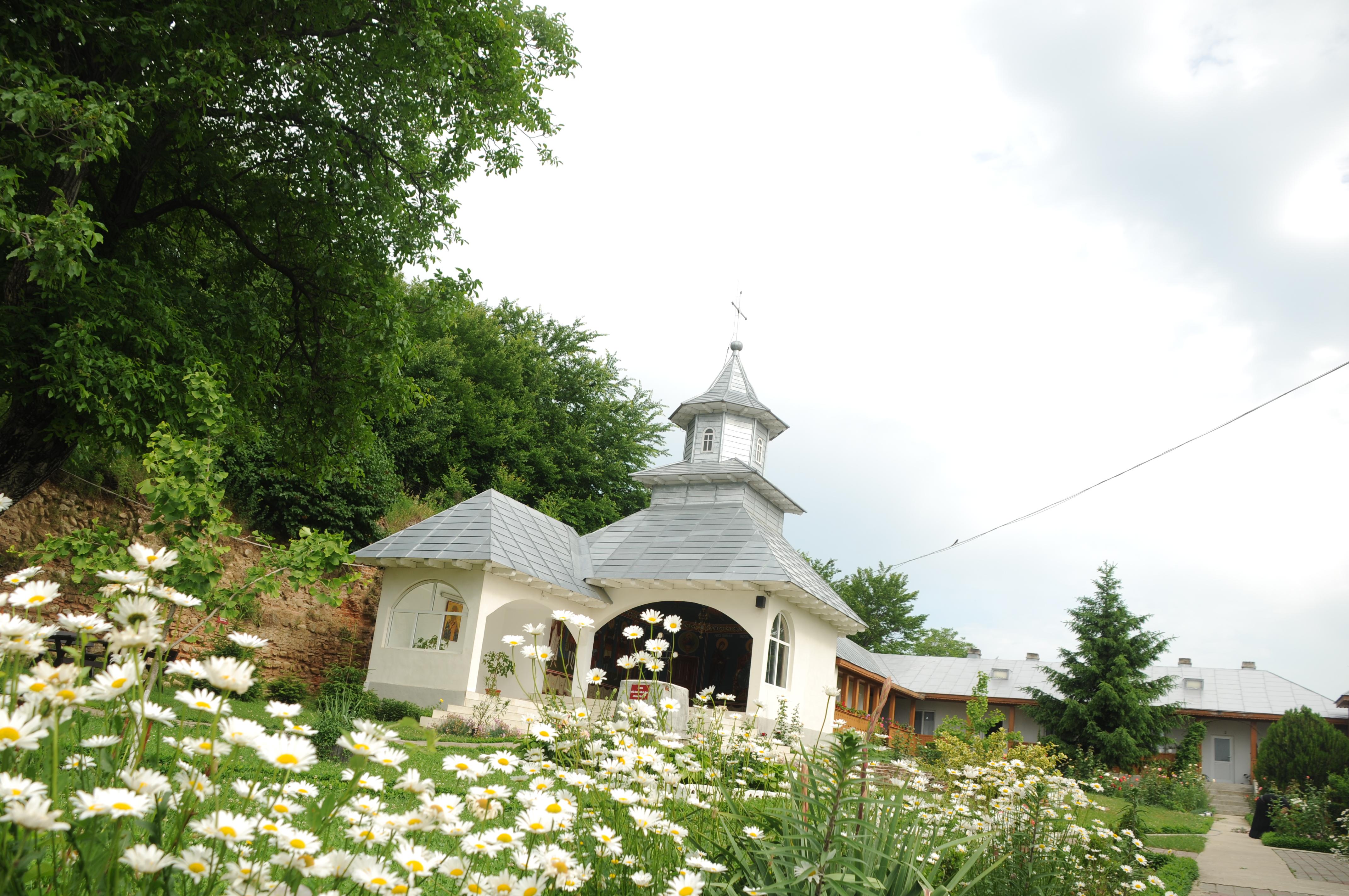 manastirea brazi 3